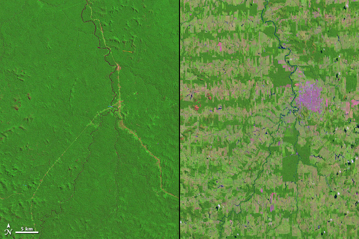 Rondônia in western Brazil deforestation before and after
